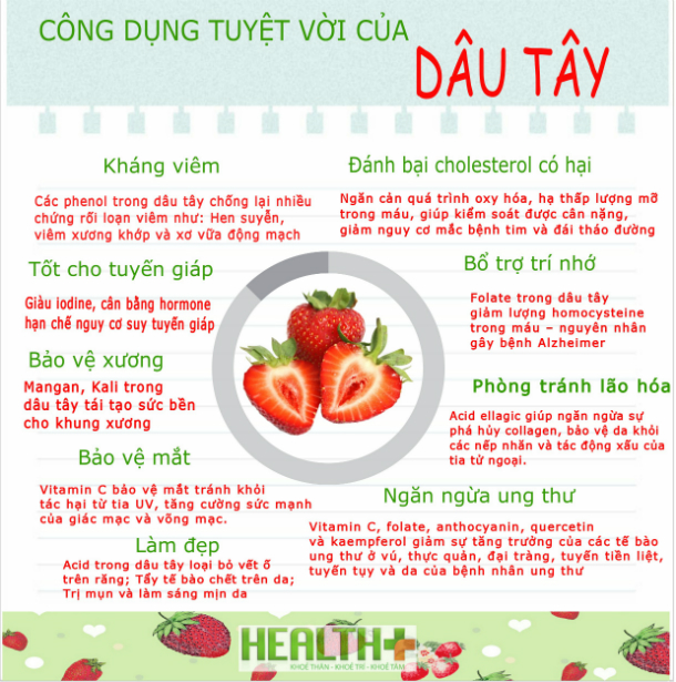 http://phucthao.com/images/products/dautay/large/cong-dung-dau-tay.jpg