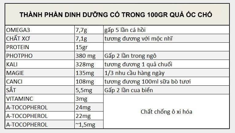 http://phucthao.com/images/products/quaoccho/large/dinh-duong-qua-oc-cho.jpg
